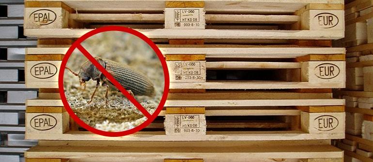 fumigacja exportowa, fumigacja na eksport, fumigacja szkodników drewna